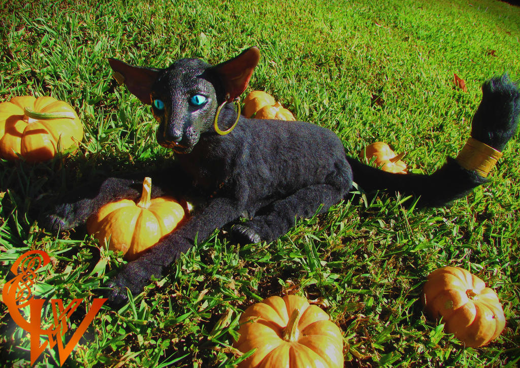 FOR SALE! Church The Reaper Cat-Poseable Artdoll by Celtic