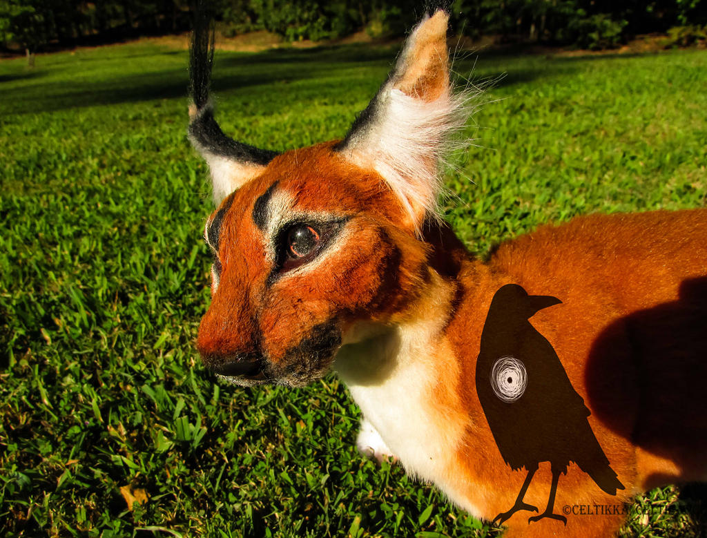Ring of fire-Poseable art doll by Celtic-Wicca on DeviantArt