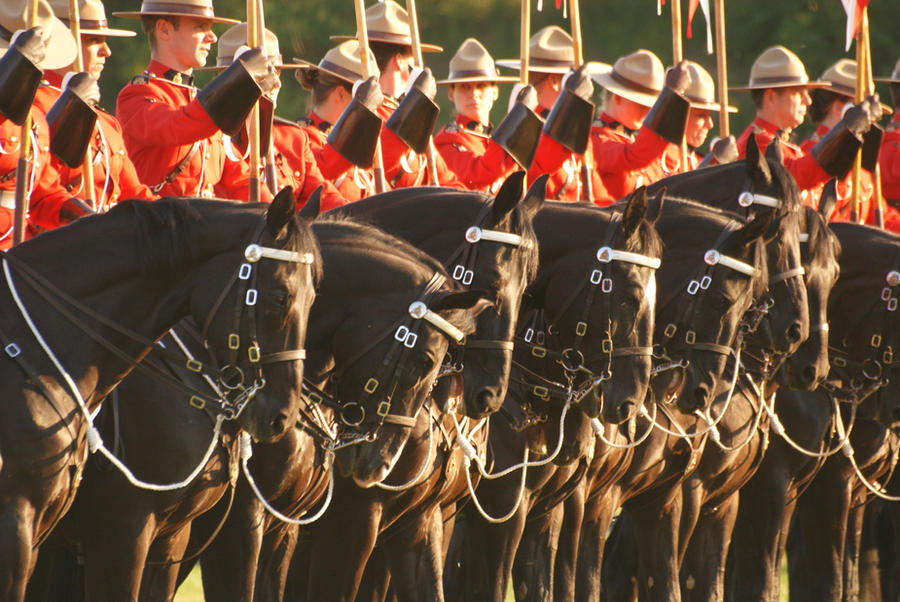 Mounted police by gawa-alexe