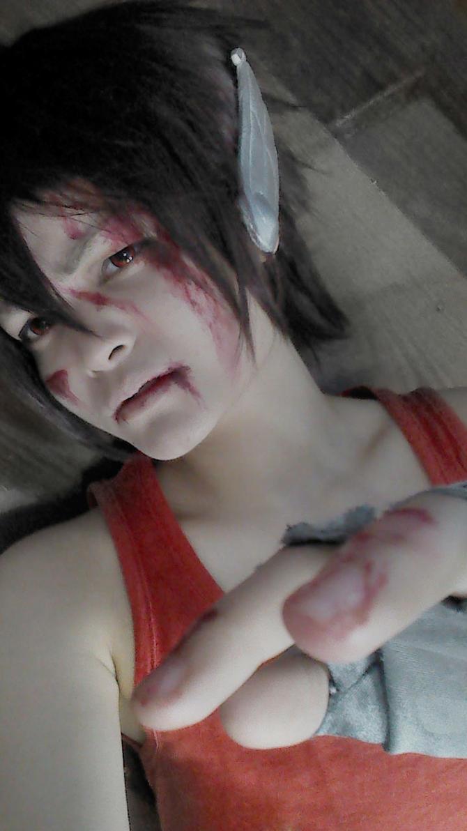 Fallen Pegasus by Ha-ru-mi-chan