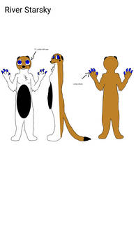 River's New Reference