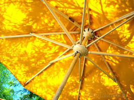 .Color Yellow. by The-Laurasaur