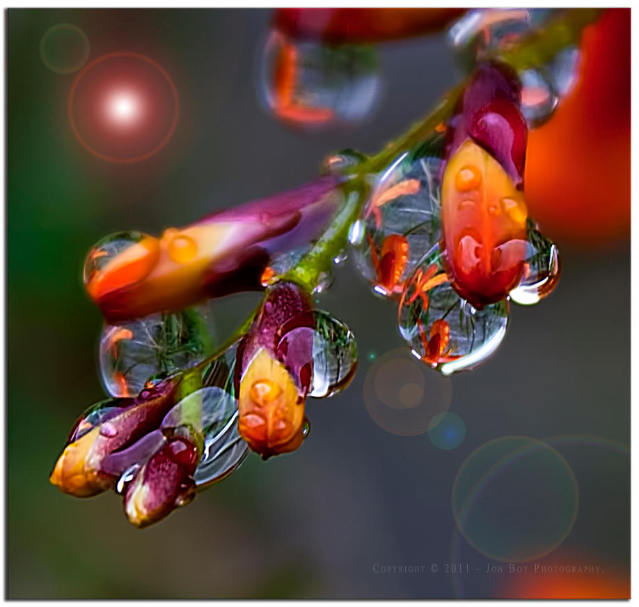 Drops With Flair by jonboy56