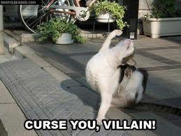catz! CURSE U VILLAIN! by jaguargirl13