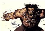 Wolverine by leinil