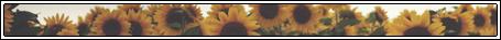dbvt92b-6f0b6059-6c52-4972-b6a8-eebeaaa2