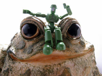 Giant Frog by DivineError