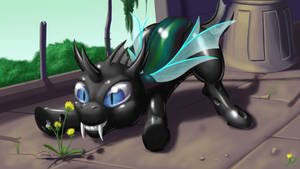 Chance The Changeling