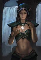 Elf Raider by 2lao