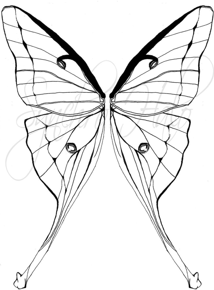 luna moth tattoo commission by synchro halo on deviantart