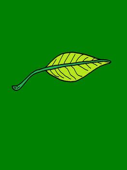 Leaf (colored)