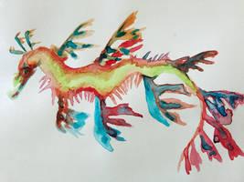 Leafy Sea Dragon by AquaticJM