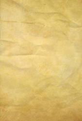 Parchment Paper 3