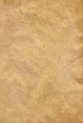 Parchment Paper 4