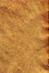 Parchment Paper 8