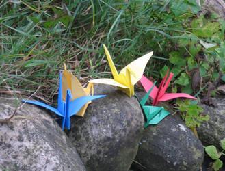 5 Cranes on rocks by Ninarry