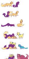 Sailor Catpile