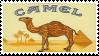 camel - stamp