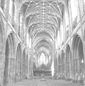 Infinite-Mausoleum's Profile Picture
