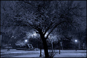 Snowy Silence by bdusen