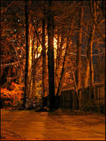 By Inferno's Light by bdusen