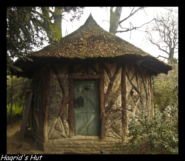 Hagrid's Hut by Kayley1590