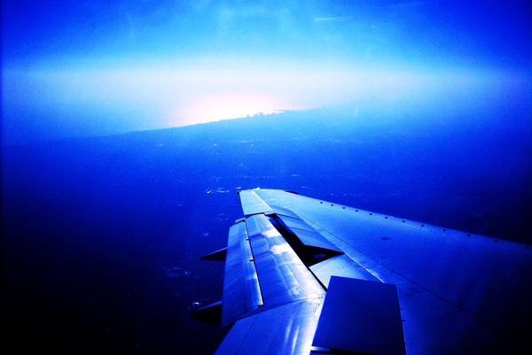 Wing 4 by lardbars3