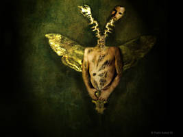 Change - In The House Of Flies by myndsnare