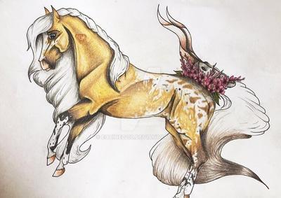 Zirryanna  by equine2210