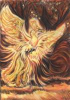 A firebird by Mahiqun