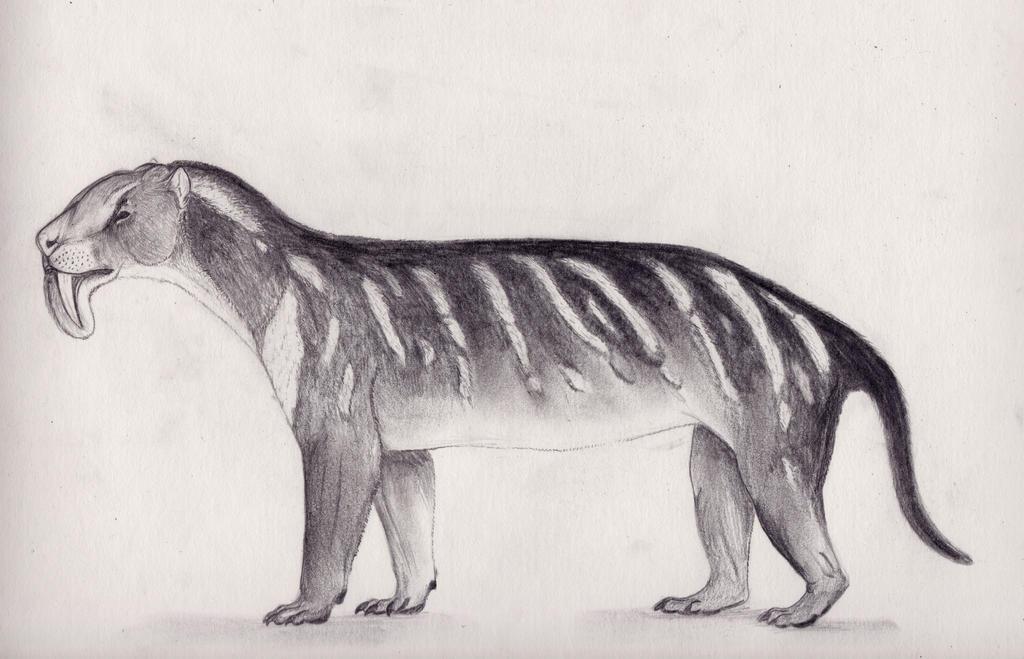 Thylacosmilus Atrox by Smerjeevski