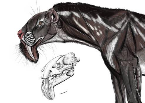 Thylacosmilus atrox 2020.
