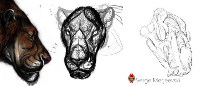 Panthera Atrox,