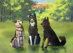 because of separation from them I am lonely by Aarenki