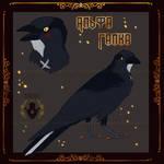 Gift/ Alpha jackdaw by Aarenki