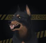 Do not cross by Aarenki