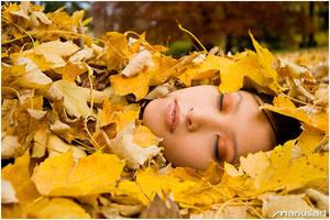 Autumn II by Mariusart