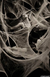 Queen of the Web I by Mariusart