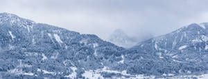 Winter XIII