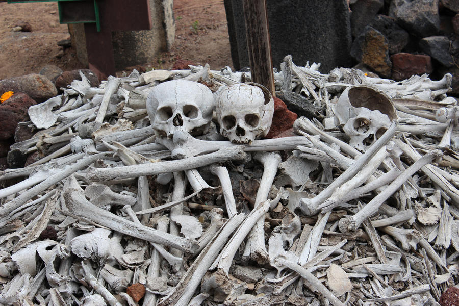 Human Bones by ImNotParanoid on DeviantArt