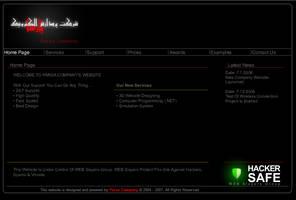 Lightweight Flash Company Website