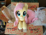 Fluttershy Arrives!!!
