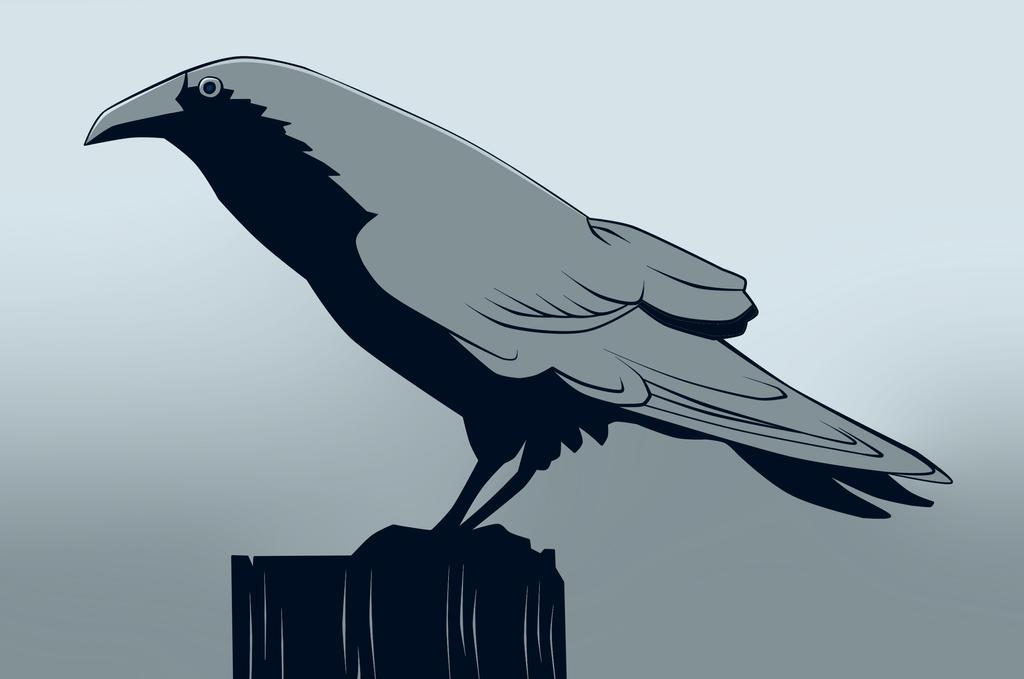 Raven by atarashiidesu