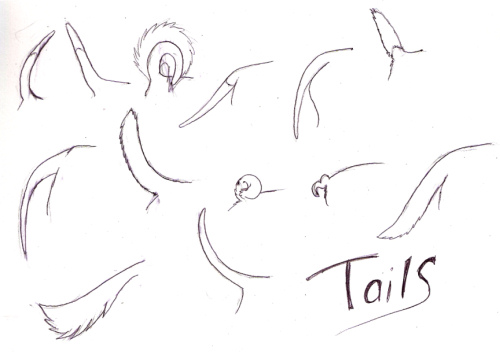 Dog tail references by...