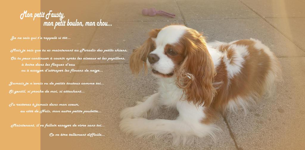 Mon petit Fausty by Sandrielle