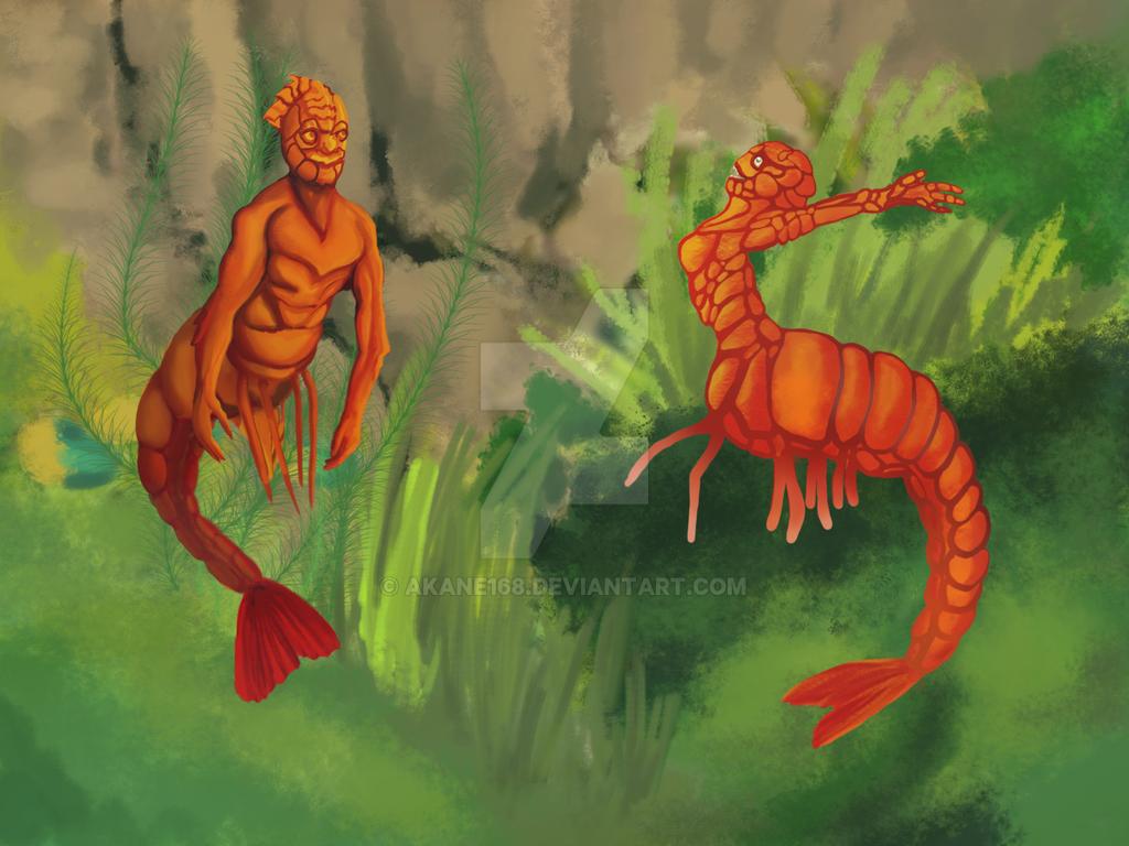 MerMay: Shrimps by Akane168