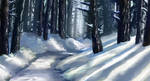 Forest Path (Winter version)