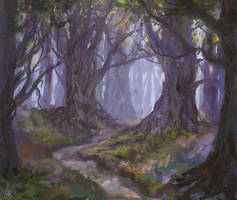 forest by dreamin-Lea