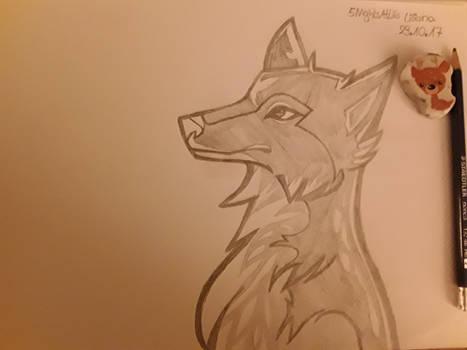 Der Wolf - The Wolf - El Lobo
