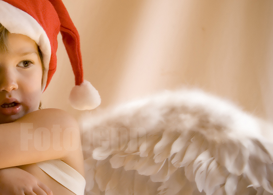 Merry Christmas by FotoJenn